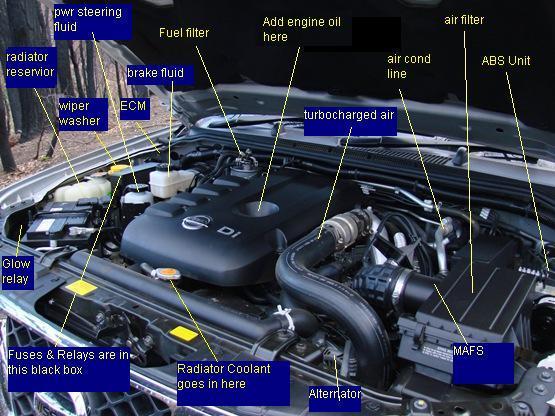 Nissan Navara D40 Fuse Box Diagram : Engine bay diagram please the navara forum